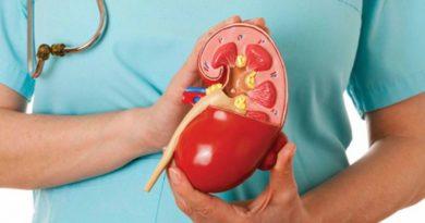 CONSEJOS: Remedios caseros para expulsar las piedras en el riñón