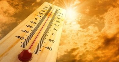 Efectos del calor en el organismo