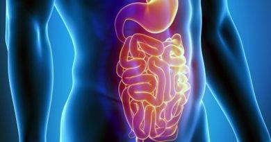 Demuestran la actividad antitumoral del gazpacho frente al cáncer de colon en cultivo celular