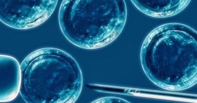 Una proteína regula la formación de vasos sanguíneos en los tumores