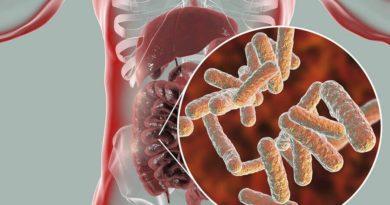 ATENCIÓN: ¿Qué es la disbiosis intestinal?