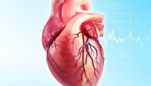 El consumo frecuente de carnes rojas está vinculado con altos niveles de una sustancia asociada con cardiopatías
