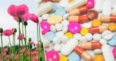ATENCIÓN: Adicción a los opioides: ¿por qué ocurre?