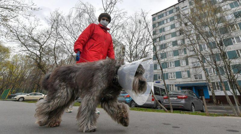 Rusia registra 87.147 casos de covid-19 tras sumar 6.198 contagios en un día