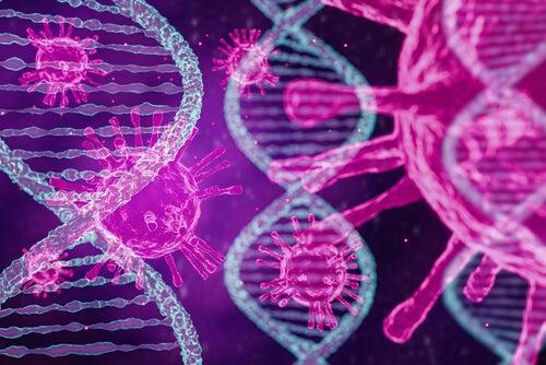 Un estudio confirma los tres tipos de coronavirus que hay en el mundo