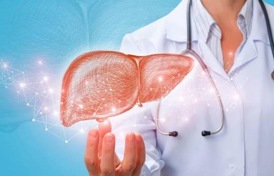 Pacientes con hígado graso pueden desarrollar formas más graves de COVID-19