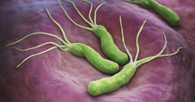 Helicobacter pylori y cáncer: ¿están relacionados?