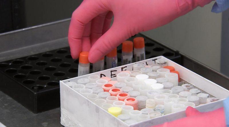 La primera vacuna contra el covid-19 probada en EE.UU. crea anticuerpos a niveles comparables a los de quienes sobrevivieron la enfermedad.
