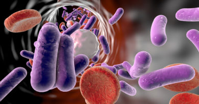 ¿Qué es una bacteriemia?