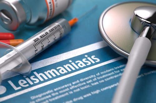 ¿Es contagiosa la leishmaniasis?