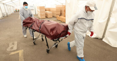 Los rumores y las desinformaciones sobre el covid-19 han matado a más de 800 personas