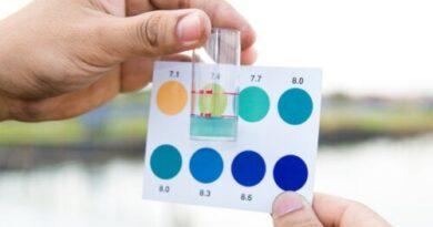 ¿Cuáles medicamentos cambian el color de la orina?