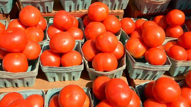 Cestas con tomates
