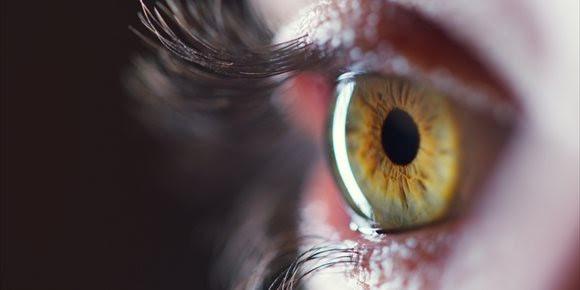 Conceptos generales sobre el desprendimiento de retina