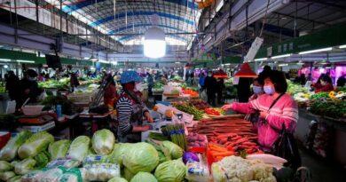 Cuáles son los alimentos ideales para subir las defensas en plena pandemia