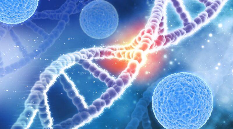 ¿Los seres humanos podrían vivir más de 150 años? La ciencia explora las razones de los límites