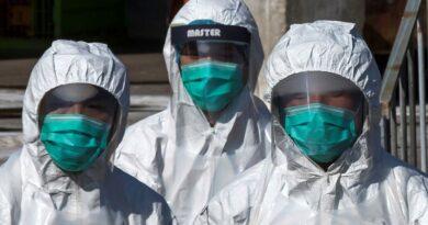 Hasta ahora, bajo riesgo de propagación humana de la gripe aviar H10N3