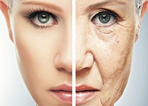 Ayudar a frenar el envejecimiento