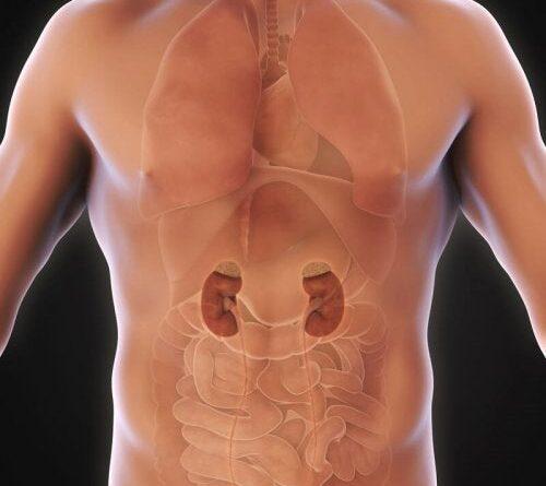 Síntomas y causas de tumores suprarrenales benignos