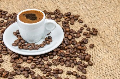 Los polifenoles del café y la diabetes