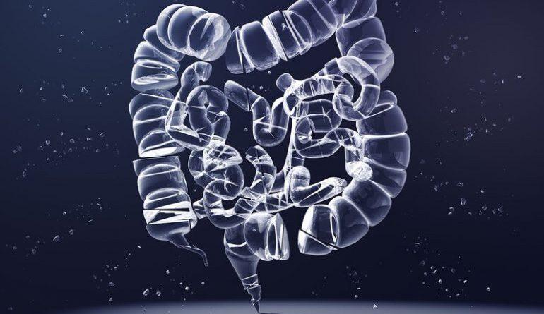 Intestino y COVID-19: ¿puede estar allí la raíz de los casos graves?